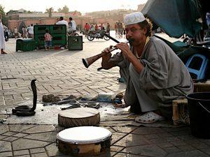 Schlangenbeschwörer Marrakesch