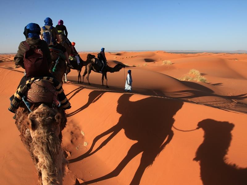 Kamelritt in die Wüste