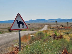Königsstädte Marokko: Schild auf dem Weg