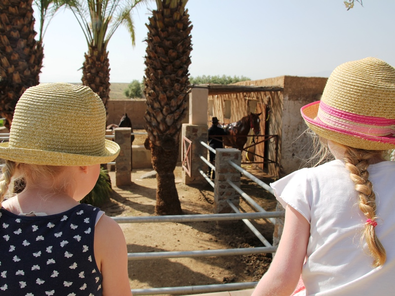 Bauernhof Lalla Takerkoust Familienreise Marokko