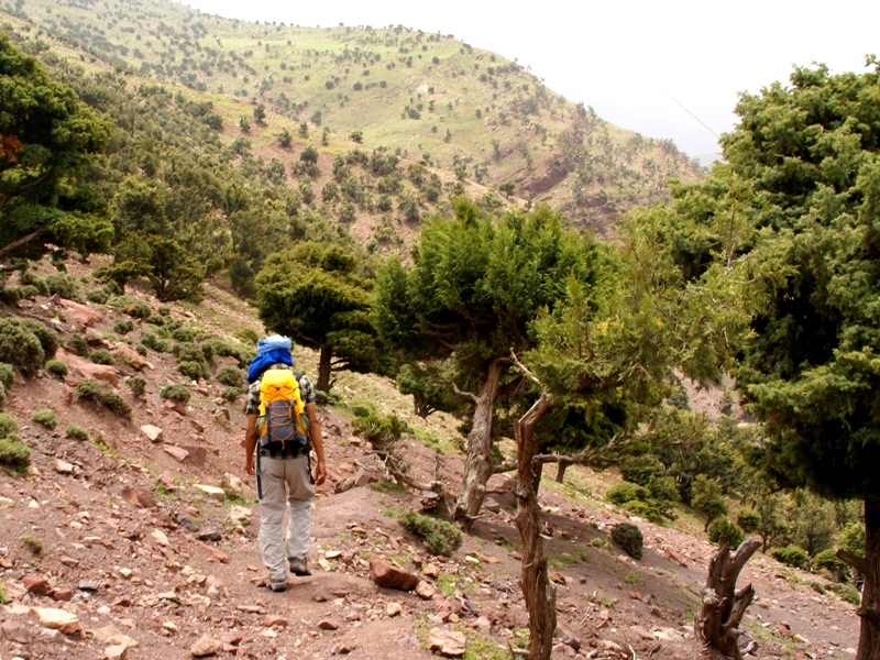 Wanderung mit Guide Imlil