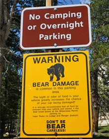 Bären Warnschild im Sequoia Nationalpark