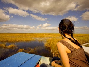 Florida Highlights: Aussicht in den Everglades