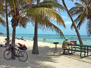Sunshine State: Palmenstrand in Key West