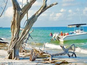 Sanibel Island: Naturstrand auf Cayo Costa