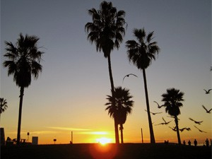 Sonnenuntergang in Santa Monica in Los Angeles Hollywood