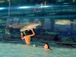 USA Familienreise: Kinder schwimmen im Pool neben großem Aquarium