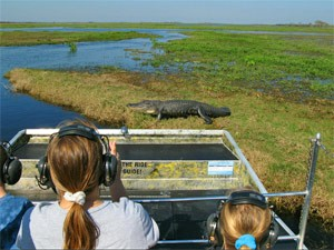 Airboattour in den Everglades