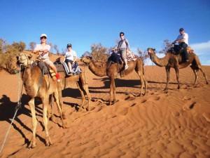 Reiten Sie durch die Wüste in Marokko.