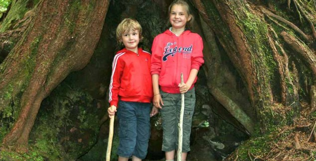 Kinder stehen vor einem großen Baum