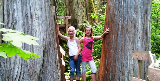 Zwei Mädchen in Kanadaas Wald