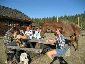 Picknick auf der Ranch mit einem Pferd