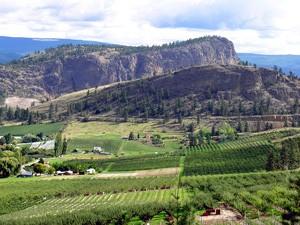 Weiter Blick über ein Weintal - Kanada Rundreise ab Vancouver