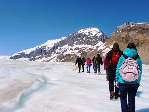 Wanderung auf einen Gletscher - Rocky Mountains Rundreise