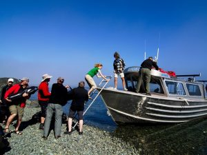 Wassertaxi zum Orka Camp - Port McNeill