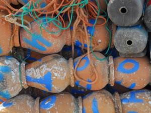 2 weken portugal algarve octopus potten