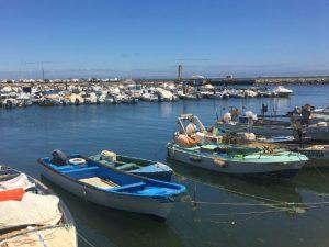 Algarve Tavira -Olhao