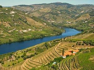 portugal reis douro vallei
