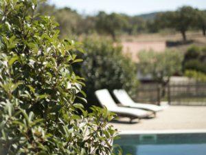 Portugal vakantie zwembad